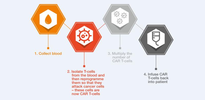 Figure 1 - CAR T_cells